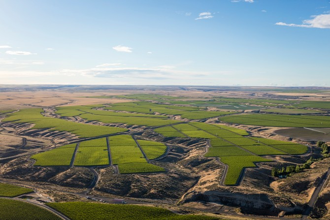 Aerial view of Double Canyon Vineyard