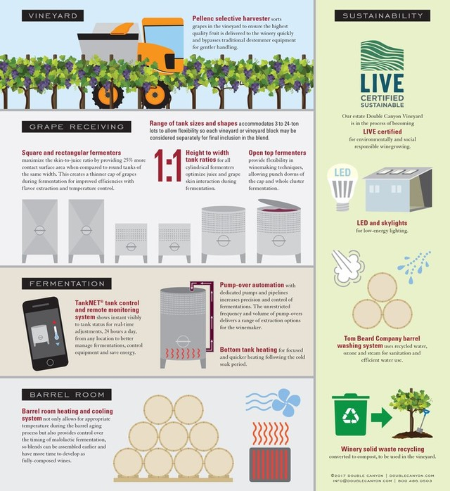Winery Infographic